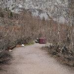 Onion valley campground