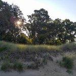 Beach campground holland sp