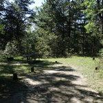 Horseshoe lake campground huron nf