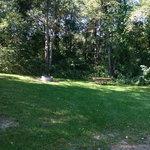 Murray lake campground