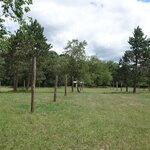 Schecks place trail camp