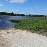 Shelldrake dam