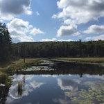 Van riper state park