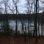 Whelan lake