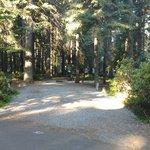 Aspen point campground