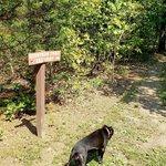 Berryman campground