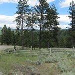 Canaan guest ranch
