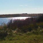 Quincy lake
