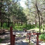 Bessey recreation complex campground