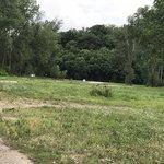 Brownville riverside park