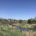 Walnut creek