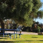 Lake mohave resort rv park