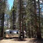 Silver dollar campground