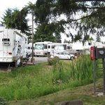 Twin cedars rv park