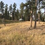 Dutchman campground black hills nf