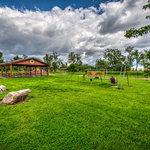 Lions city park