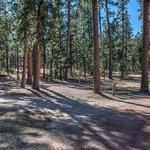 Stockade lake south campground