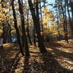Kohler andrae state park