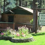 Shady pines resort