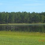Open pond recreation area