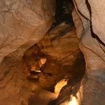 Rickwood caverns state park
