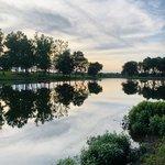Sharon johnston park