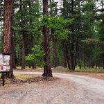 Loup loup campground