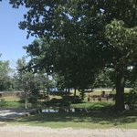 Beech point campground