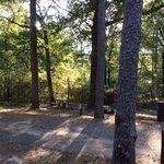 Crowleys ridge state park