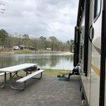 Crystal springs campground royal ar
