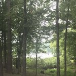 Horseshoe bend campground