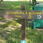 Lake charles state park