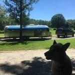 Tyler bend campground