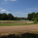 White oak lake state park