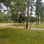 Chattahoochee rv campground fishing resort