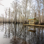 Dead lakes state recreation area