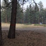 Bear creek 1