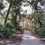 Kathryn abbey hanna park