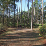 Lake dorr campground