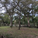 Otter springs park campground