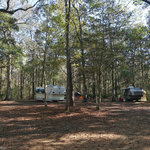 Whitehead landing campground