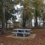 Williams landing campground