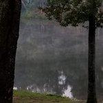 F d roosevelt state park