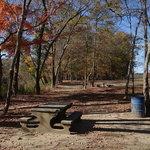 Mcintosh reserve park