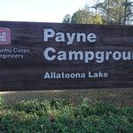 Upper Stamp Creek Campground Reviews - Campendium