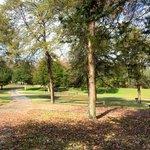 Pulsaki county park