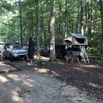 S tree campground