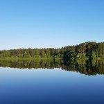 Beaver dam campground kisatchie nf