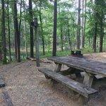 Gum springs campground