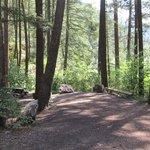 Sugarloaf campground